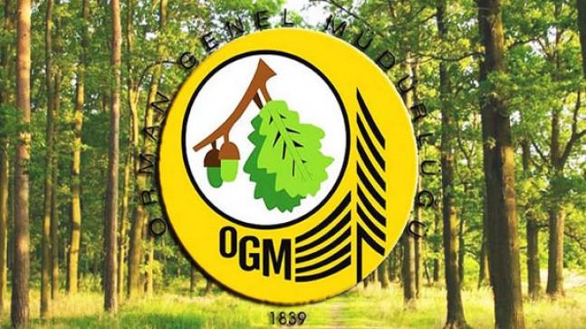 Orman Genel Müdürlüğü 2080 Geçici İşci Alacak