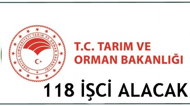 Tarım ve Orman Bakanlığı 118  İşci Alacak